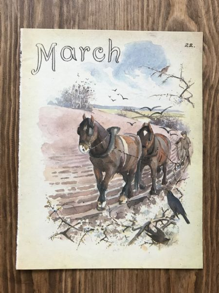 March - Country Diary of an Edwardian Lady - Book Page -